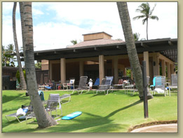 Maui Condo Rentals, with ocean and garden views