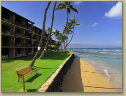 Maui Condo Rentals At Papakea Resort