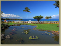 The whaler one and two bedroom condos on kaanapali beach for Koi pool opening times